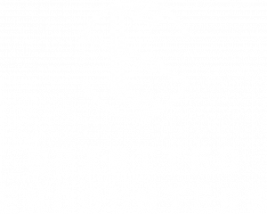 Spirited Encounters